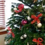 CS-family-tree-of-hope